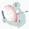 TEMA_Software de an�lisis de movimiento